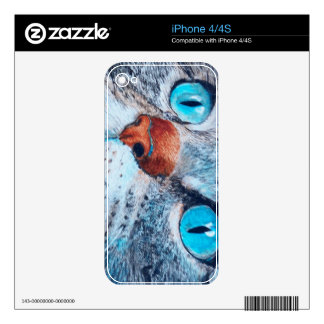 Blue-eyed Tabby Decals For The iPhone 4