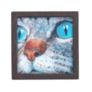 Blue-eyed Tabby Keepsake Box