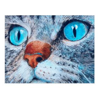 Blue-eyed Tabby Postcard