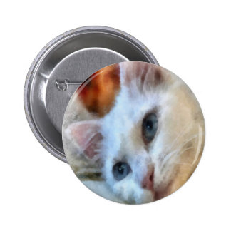 Blue Eyed White Cat Pinback Button