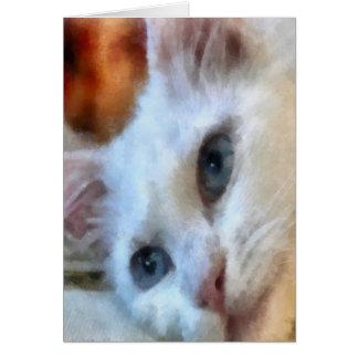 Blue Eyed White Cat Card