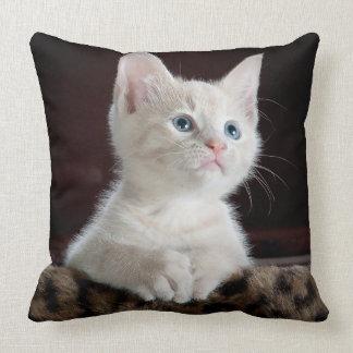 Blue Eyed White Kitten Throw Pillow