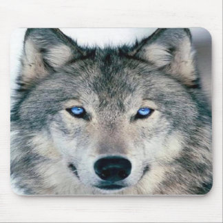 Blue Eyed Wolf Mouse Pad