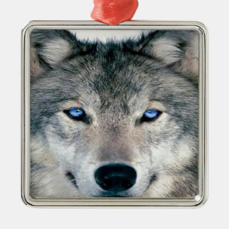 Blue Eyed Wolf Silver-Colored Square Decoration