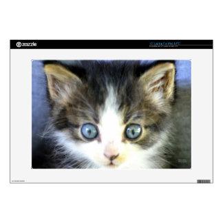 "Blue Eyes 15"" Laptop Decals"