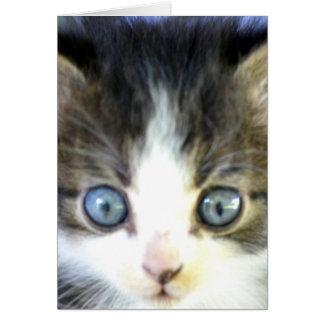 Blue Eyes Card