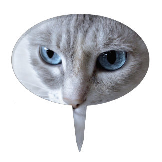 Blue Eyes Kisa Cat Cake Topper