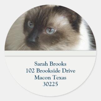 Blue Eyes Kitty Address Labels Classic Round Sticker