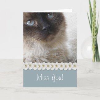 Blue Eye's Kitty card