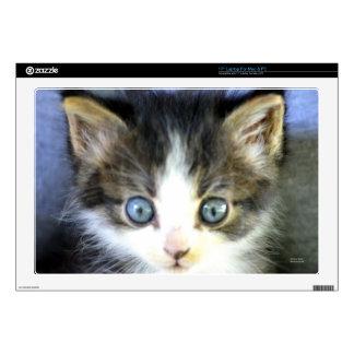 Blue Eyes Laptop Decal