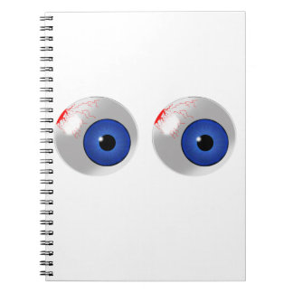 blue eyes notebook