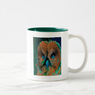 BLUE EYES OWL Two-Tone COFFEE MUG