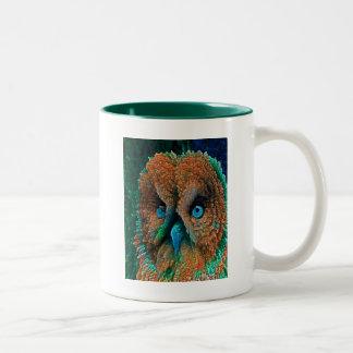 BLUE EYES OWL Two-Tone COFFEE MUG