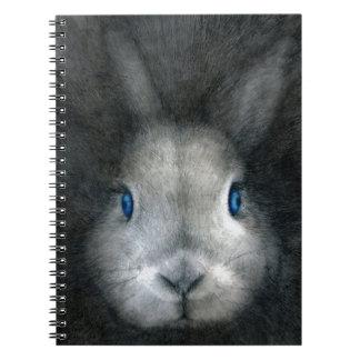 BLUE EYES SPIRAL NOTEBOOKS