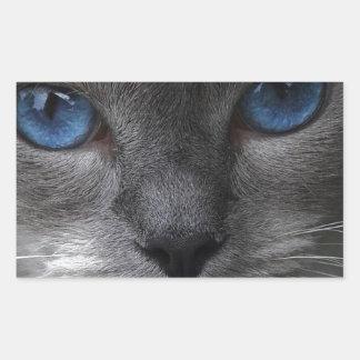 Blue Eyes Rectangular Sticker