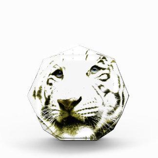 Blue Eyes, White Tiger Award