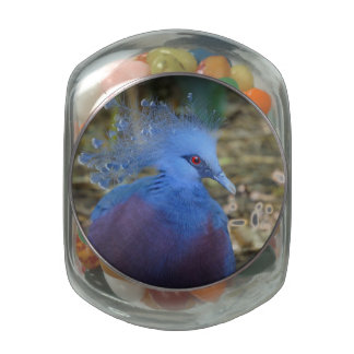 Blue Feathered Beauty Jelly Belly Candy Jar