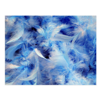 Blue Feathers Postcard