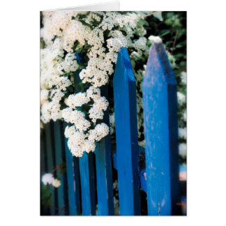 Blue fence with white flowers card