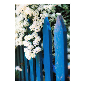 Blue fence with white flowers custom invitations