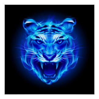 Blue Fire Tiger Face Poster