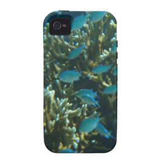 blue fish and coral Case-Mate iPhone 4 cover