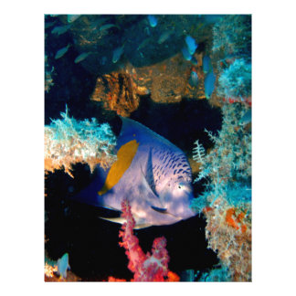 blue fish in coral reef letterhead