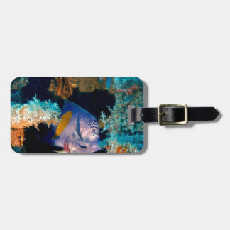 blue fish in coral reef tags for luggage