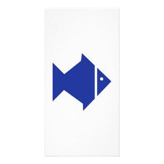 Blue Fish Photo Card