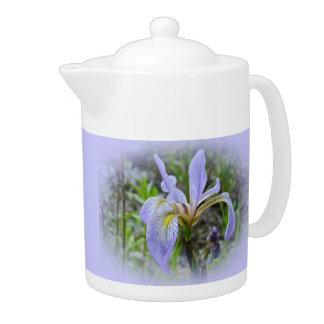 Blue Flag - Wild Iris