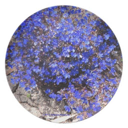BLUE FLORAL PLATE