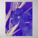 Blue Floral Prints Print