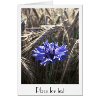 Blue Flower in Grain Card