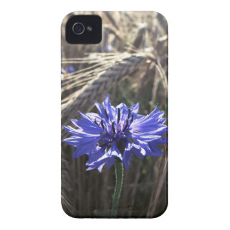 Blue Flower in Grain iPhone 4 Cases