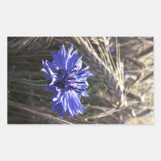 Blue Flower in Grain Rectangular Sticker