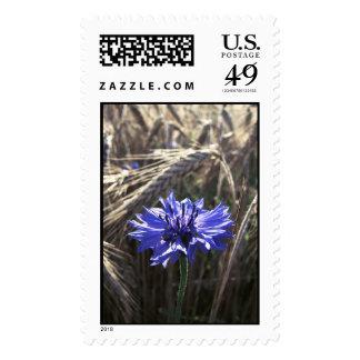 Blue Flower in Grain Stamp