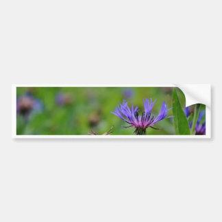 Blue flower in the meadow bumper sticker