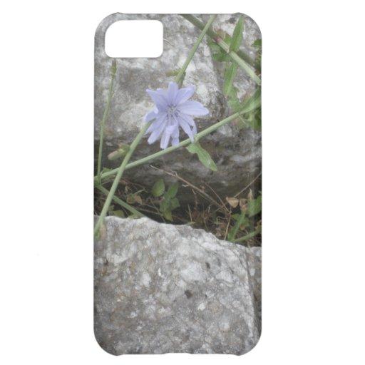 Blue Flower iPhone 5C Cases