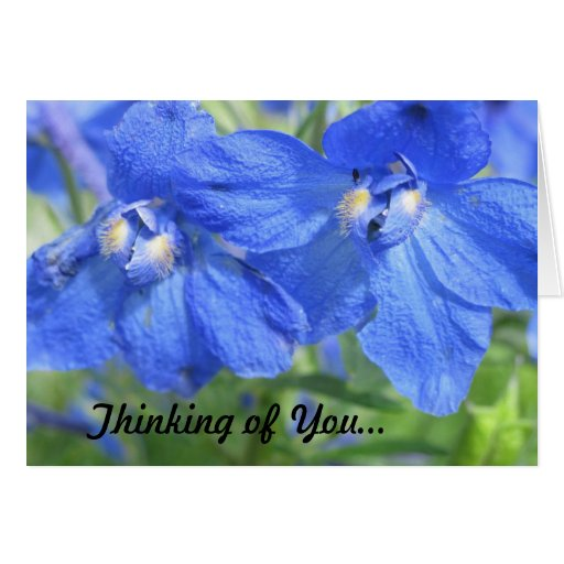 Blue Flower Thinking Of You Card
