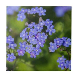 Blue Flowers Blossoms Destiny Peace Love Park Vine Ceramic Tile