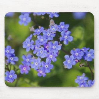 Blue Flowers Blossoms Destiny Peace Love Park Vine Mouse Pad