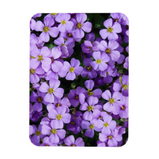 Blue Flowers Magnet