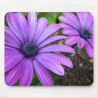 Blue Flowers Mouspad  Daisy Computer Gifts Mouse Pad