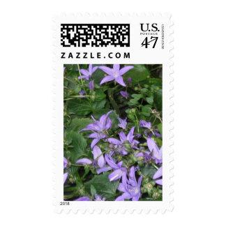 Blue flowers postage