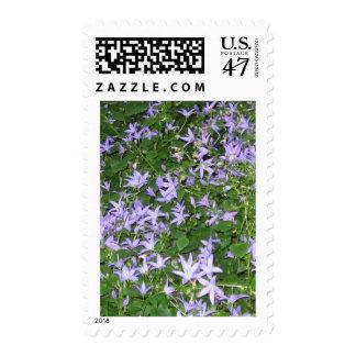 Blue flowers postage stamp