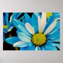 Blue Flowers Poster (<em>$26.10</em>)