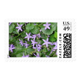 Blue flowers stamp