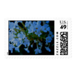 Blue Flowers Stamps