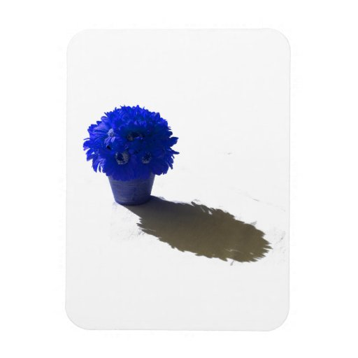 Blue Flowers White Bucket and Shadow Magnet