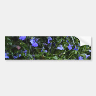 Blue Flowers with Water Droplets Bumper Sticker